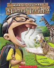 Animal Teeth Book